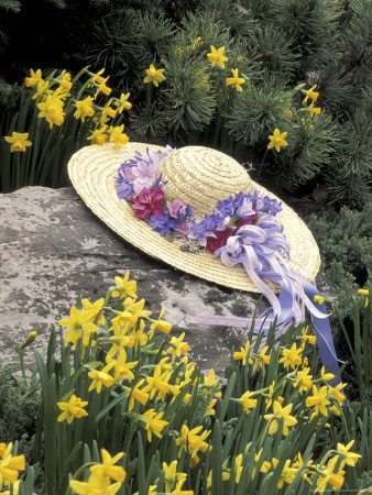 Hat and Daffodils, Louisville, Kentucky, USA